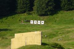 Braunwald13-17