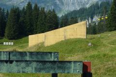 Braunwald13-27
