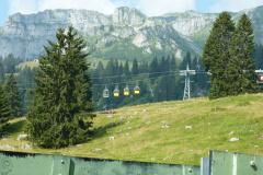 Braunwald13-33